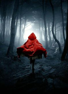 Little Red Riding Hood, Paula Stirland Dark Fantasy Art, Dark Art, Red Riding Hood Wolf, Red Ridding Hood, Fantasy Photography, Types Of Photography, Little Red Hood, Dark Beauty, Book Cover Design