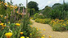 Felbrigg Gardens