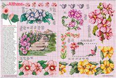 Gallery.ru / Фото #2 - Encyclopedie du point de croix ( Fleurs arbres et feuilles ) - tymannost