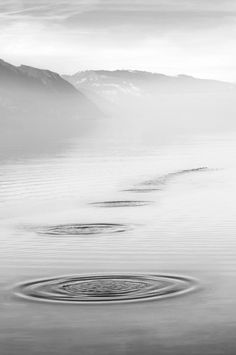 Serenity by Ludovic Bertron - laverrue Black White Photos, Black And White Photography, Espanto, Silver Blonde, Foto Art, Land Art, Serenity, Nature, Art Photography