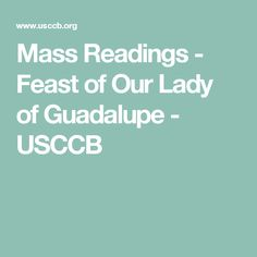 Feast of Our Lady of Guadalupe Mass Readings, Catholic Bishops, St Andrews, Daily Bible, Our Lady