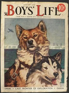 1935 Boys' Life Magazine Cover ~ Sled Dogs Illustrations, Illustration Art, Boys Life Magazine, Life Cover, Vintage Boys, Vintage Cards, Vintage Paper, Vintage Magazines, African American History