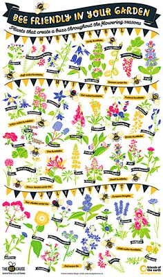 Planting a Wildlife Friendly garden from Lovely Greens. Poster: Bee Friendly in Your Garden from the Cottage Garden Design, Cottage Garden Plants, Cottage Gardens, Bee Friendly Plants, Indoor Flowering Plants, Save The Bees, Companion Planting, Flower Show, Bee Keeping
