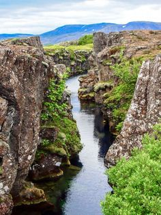 Thingvellir National Park (Top 8 Attractions around Reykjavik, Iceland) Places Around The World, Around The Worlds, Malaga Airport, Iceland Island, Thingvellir National Park, Hiking Tours, Iceland Travel, Reykjavik Iceland, Travel Log