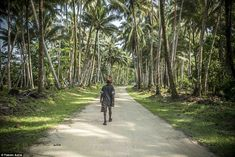 This road connects Gizo town in the south to Saeraghi community in the north, along the coast and passing by numerous smaller villages. The only hazard on this road is falling coconuts, said Astre