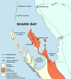 shark bay australia map 10 Best Maps And Charts Images Shark Bay Explore