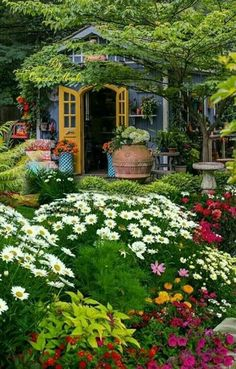 Beautiful Landscapes, Beautiful Gardens, Beautiful Flowers, Beautiful Places, Flowers Nature, Perfect Plants, Cool Plants, Gardening Magazines, Garden Cottage