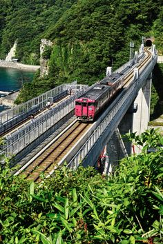 Old trains, Thomas and Friends Etc. By Train, Train Tracks, Train Rides, Buses And Trains, Old Trains, Japan Train, Shimane, Tottori, World Cities