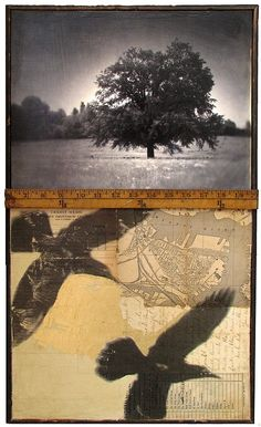 mikel robinson - vox americana, 2011;   antique clock case frame, digital inkjet print of original image, gel transfer, collage, gold leaf, encaustic, vintage yardstick.