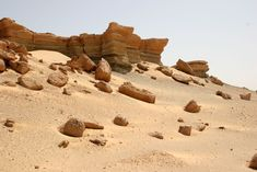 74_desert_detail.jpg (1024×683)