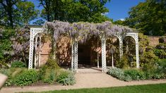wisteria at Hare Hill Cheshire Wisteria, Hare, Great Britain, Outdoor Structures, Rabbits
