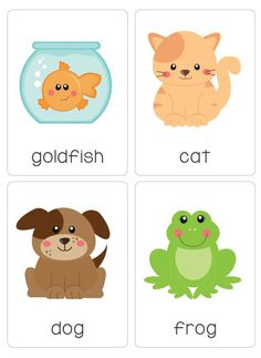 """Our pack of printable """"My Pets Flash Cards"""" is a great early literacy learning tool and a Toddler Learning, Preschool Learning, Toddler Preschool, Preschool Activities, Teaching, Flashcards Anglais, Flashcards For Kids, Hamster, English Activities"""