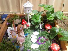 Fairy garden.  Love the strawberry plant