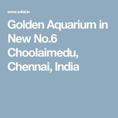 Golden Aquarium in New No.6 Choolaimedu, Chennai, India