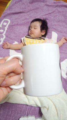 マグカップにすっぽり?!