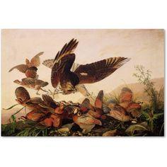 Trademark Fine Art Red-Shouldered Hawk Canvas Art by John James Audubon, Size: 12 x 19, Multicolor