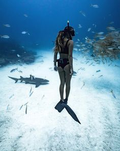 The freediving observer.  #freedive #freediving
