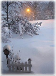 Snow LOVE THE BIRDHOUSE AND PICKET FENCE WITH THE MOON!!!! DEAN