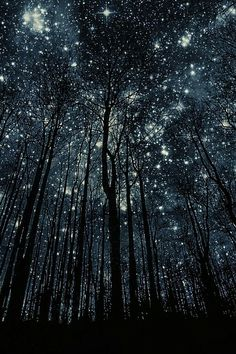 The silence was enchanting. Infinite space seemed to enter it, and my spirit, alone with the stars, seemed capable of any adventure. — W. Somerset Maugham, The Summing Up.