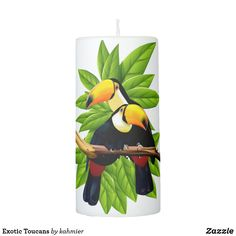 Exotic Toucans Pilla