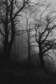 Image result for tim burton forest
