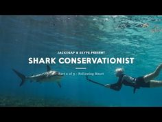 Following Heart - The Shark Conservationist - YouTube