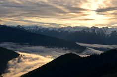 We were above the clouds. at Hurricane Ridge, Olympic National Park, WA Olympia National Park, Top 10 National Parks, Above The Clouds, All Inclusive, Day Tours, Day Trip, Pacific Northwest, Travel Guides, Evergreen