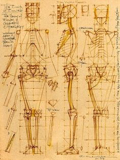 FIGURE DRAWING MICHAEL MENTLER CRANIAL BOXES BASED ON 5 EYES WIDE AND 5 EYES LONG CRANIAL BOX ON A 7 EYES LONG HEAD. CRANIAL BOX STUDY EXAMPLE 3