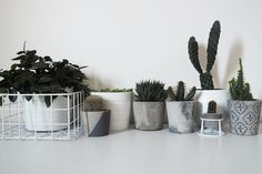 My love of plants is a well-documented one, so as you can imagine I am always looking for new ways to house my growing collection. I had seen some beautiful concrete planters on Not on the High Str…