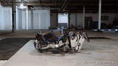 Source: Boston Dynamics