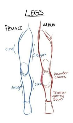 Learn To Draw Male and female leg anatomy drawing reference Drawing Lessons, Drawing Techniques, Viria, Pencil Art Drawings, Art Drawings Sketches, Drawings Of Men, Illustration Sketches, Hand Drawings, How To Draw Sketches