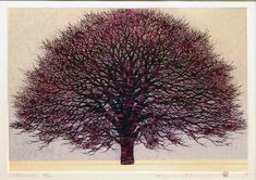 'Plum Tree' - Hajime Namiki  Original woodblock print, signed and numbered in pencil. Edition of 200, 1996