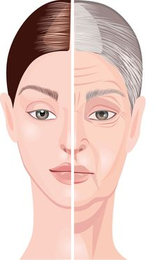 age-related changes in face and neck skin, clipart a woman's face at different ages, a woman's face at a young age, a woman's face in old age, skin health - Buy this stock illustration and explore similar illustrations at Adobe Stock Avon, Poster Background Design, Beauty Clinic, Theatrical Makeup, Beauty Illustration, Hair Vitamins, Love Your Skin, Face Skin Care, Skin Problems