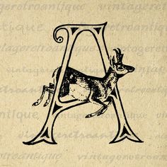 Printable Letter A with Antelope Image Download Antelope