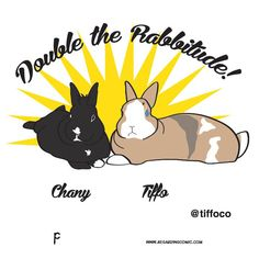 The chronicle based on living with three furry roommates: Lance, Russette and Samuel L. Bunny Meme, Funny Bunnies, Secret Life Of Rabbits, Bunny Halloween Costume, Fluffy Bunny, Bun Bun, Comic Strips, The Secret, Instagram