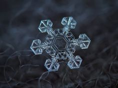 Photographer Alexey Kljatov takes incredible close-up photos of snowflakes in his backyard in Moscow.