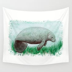 "Wall Tapestry ••• ""The Manatee"" watercolor art by Amber Marine ••• AmberMarineArt.com •••"
