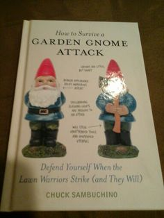 Kaleb Nation Gnome Photography | How To Survive A Garden Gnome Attack |  Pinterest | Gnomes And Gardens Design Ideas