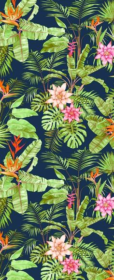 Ideas for flowers tropical pattern wallpapers Nature Wallpaper, Wallpaper Backgrounds, Iphone Wallpaper, Plant Wallpaper, Tropical Wallpaper, Affinity Photo, Deco Floral, Art Floral, Tropical Pattern