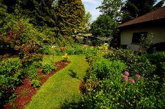Ach, die Sonne gibt es auch noch? ...  Da freut sich aber mein Garten. Und ich. Wobei für heute Nachmittag schon wieder Regen angesagt ist. Dabei sind meine Wasserfässer längst voll. :-)