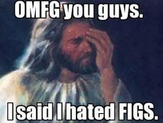 That's true, he did.  Gays, you're good. Fig Newtons, beware!