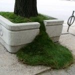 "Sean Martindale: Grass Spills (Outside the Planter Boxes project) ""In total, four spilling planters were created on the project launch day along the West side of University Avenue, just North of Queen Street West."""