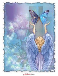 angel anjo ange angelic