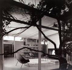 braxton and yancey  Eichler Homes     Mid Century Modern Homes That
