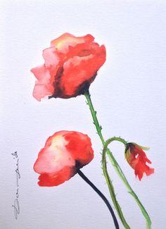 Aquarelle Originale Dam Domido Coquelicot Poppy Artprice & Akoun watercolor