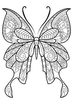 Adult Butterfly Coloring Book PicturesEasy PagesColoring