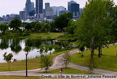 Visit the 12 most beautiful parks in the city of Montreal. Whether picnicking, reading or playing sports, the city is full of green spaces to enjoy. Beautiful Park, Most Beautiful, National Language, Of Montreal, Canada, Thing 1 Thing 2, Grand Prix, Great Places, Night Life