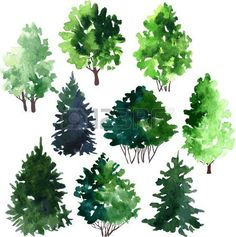 set of set of conifer trees drawing by watercolor, vector illustration set of trees drawing by watercolor, hand drawn vector illustration photo Tree Sketches, Drawing Sketches, Drawings, Drawing Drawing, Watercolor Plants, Easy Watercolor, Watercolor Architecture, Conifer Trees, Tree Images