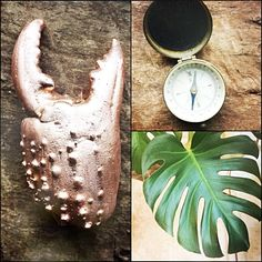 FANIE ROUX   🌜POETIC COPPER TREASURES 🌛handmade in Cologne ✨ Alchemist 🌿Vegan 🌔   Monstera I Kupferschmuck I Glücksbringer I Findings I Mermaid www.etsy.com/shop/fanieroux