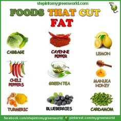 ☛ Include these foods in your diet if you wish to lose weight.    For a flat tummy smoothie recipe:  http://www.stepintomygreenworld.com/greenliving/greenfoods/flat-tummy-smoothie/  ✒ Share | Like | Re-pin | Comment